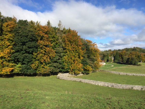 woodnook-autumn-colours-3